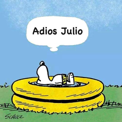 Adios Julio