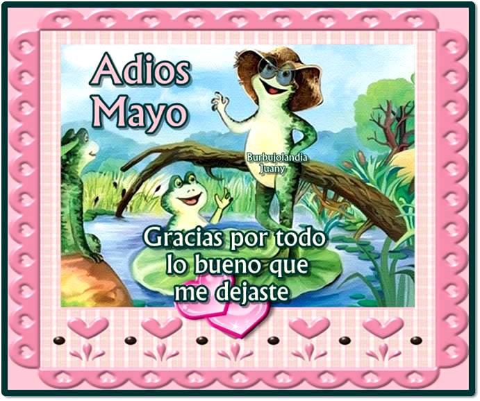 Adiós Mayo. Gracias por todo lo bueno que me dejaste