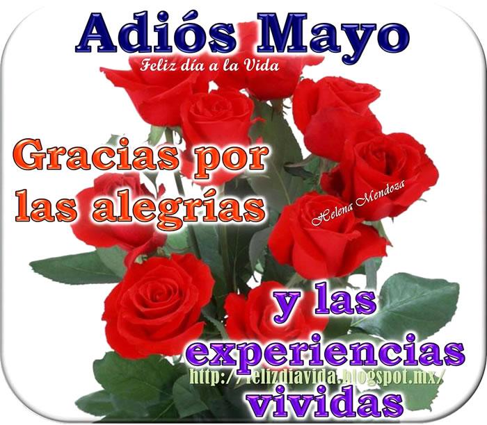 Adiós Mayo