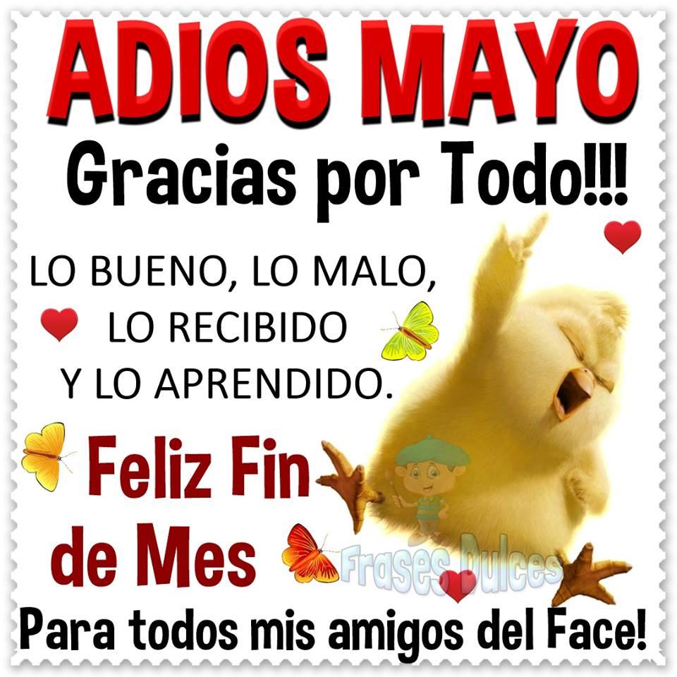 Adios Mayo, gracias por todo!