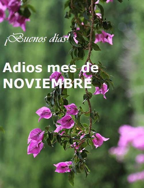 ¡Buenos días! Adios mes de Noviembre