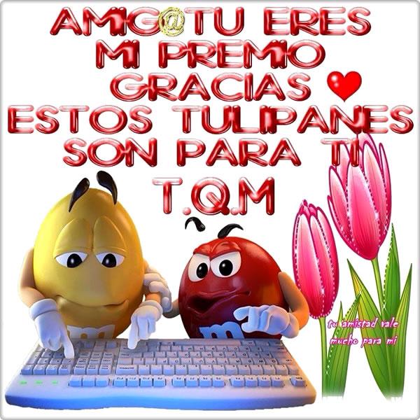 Amig@ tu eres mi premio, Gracias, Estos tulipanes son para ti. TQM