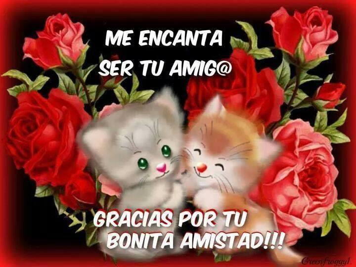 Me encanta ser tu amig@, gracias por tu bonita amistad!!!