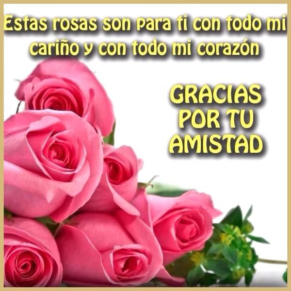 Estas rosas son para ti con todo mi cariño... Gracias por tu amistad