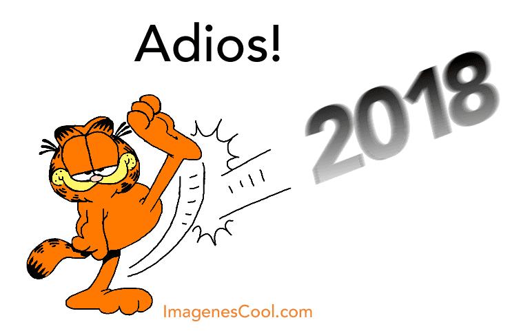 Adios 2018!