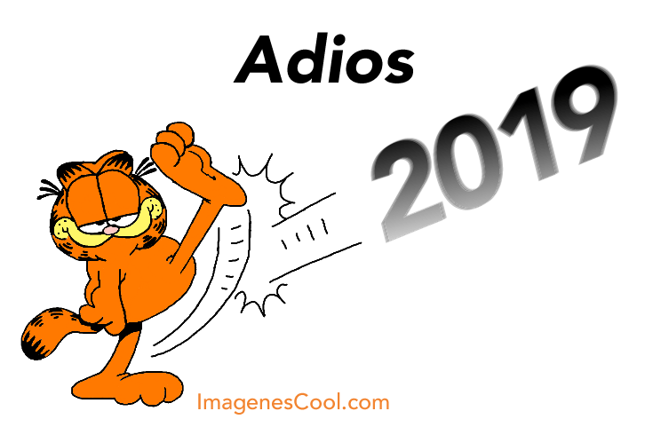 Adios 2019!