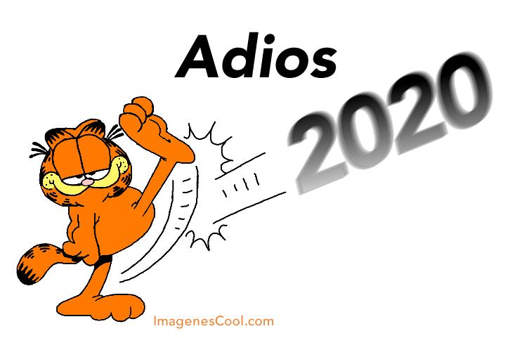 Adios 2020!