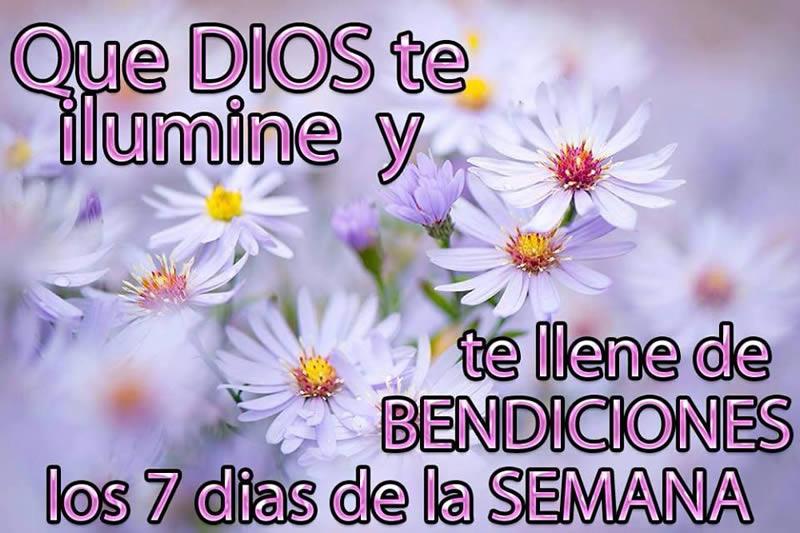 Que Dios te ilumine y te llene de bendiciones los 7 días de la semana