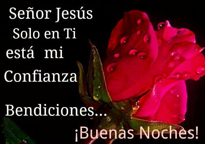 Señor Jesús solo en ti esta mi confianza. Bendiciones... ¡Buenas Noches!