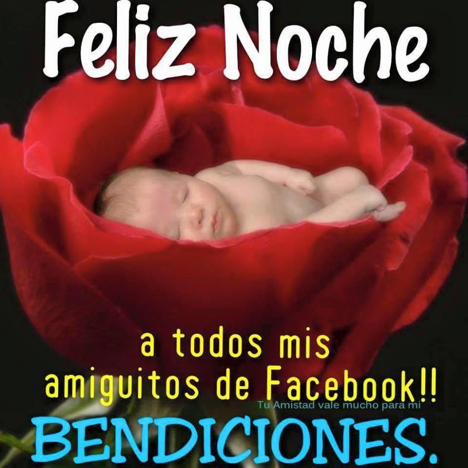 Feliz Noche a todos mis amiguitos de Facebook!