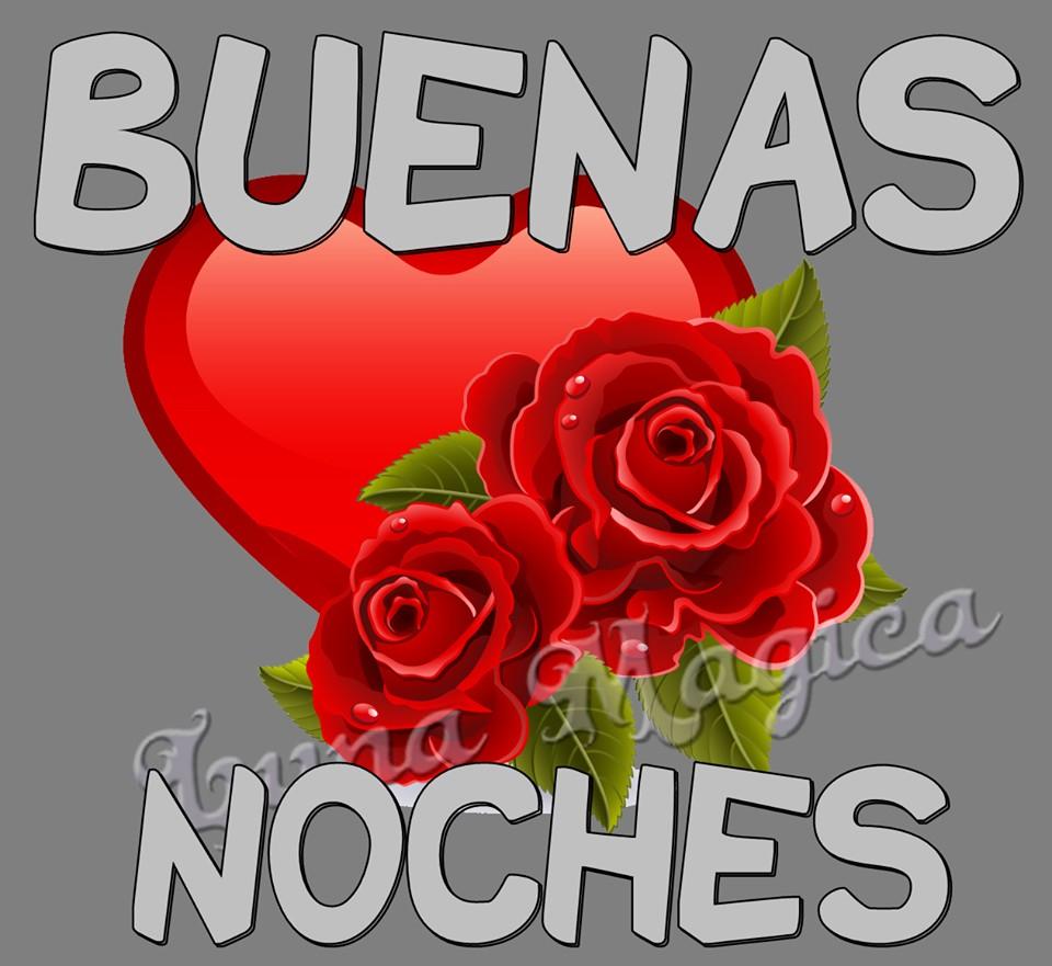 Rosas Rojas imagen 9