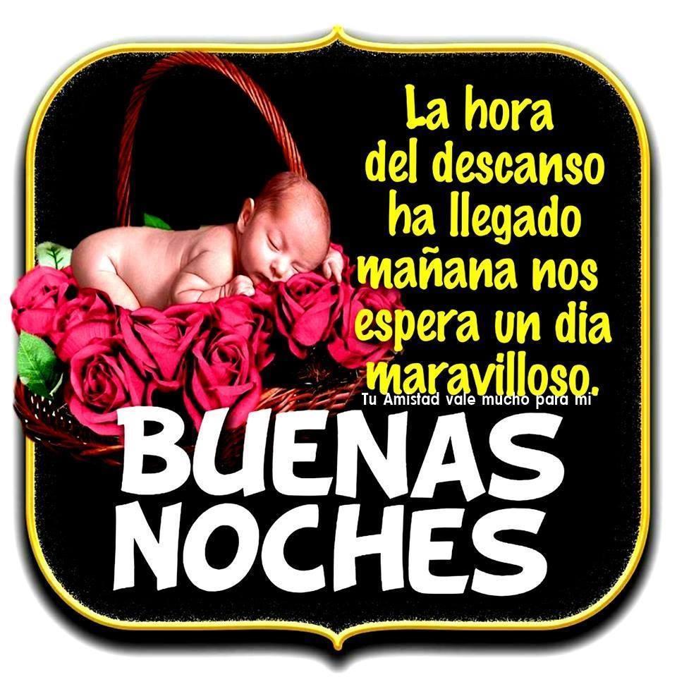 Rosas Rojas imagen 10