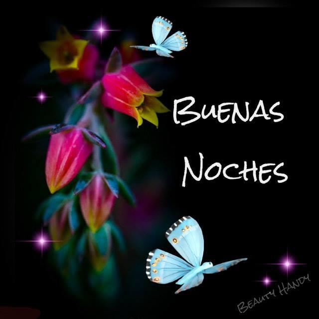 153 Imagenes Etiquetadas Con Mariposas Imagenes Cool