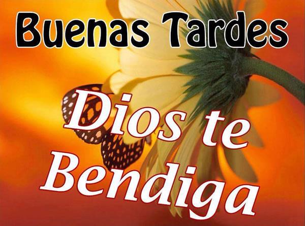 Buenas Tardes, Dios te Bendiga