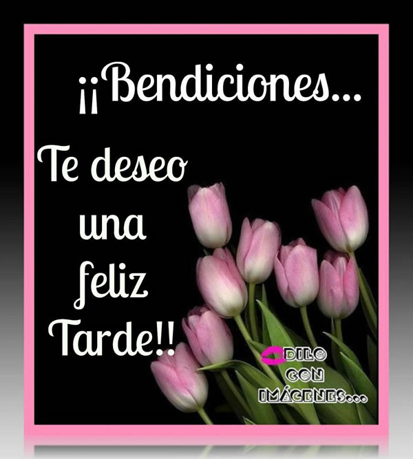 Bendiciones... Te deseo una feliz Tarde!