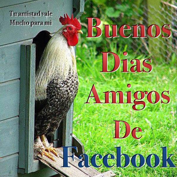 Buenos días amigos de facebook