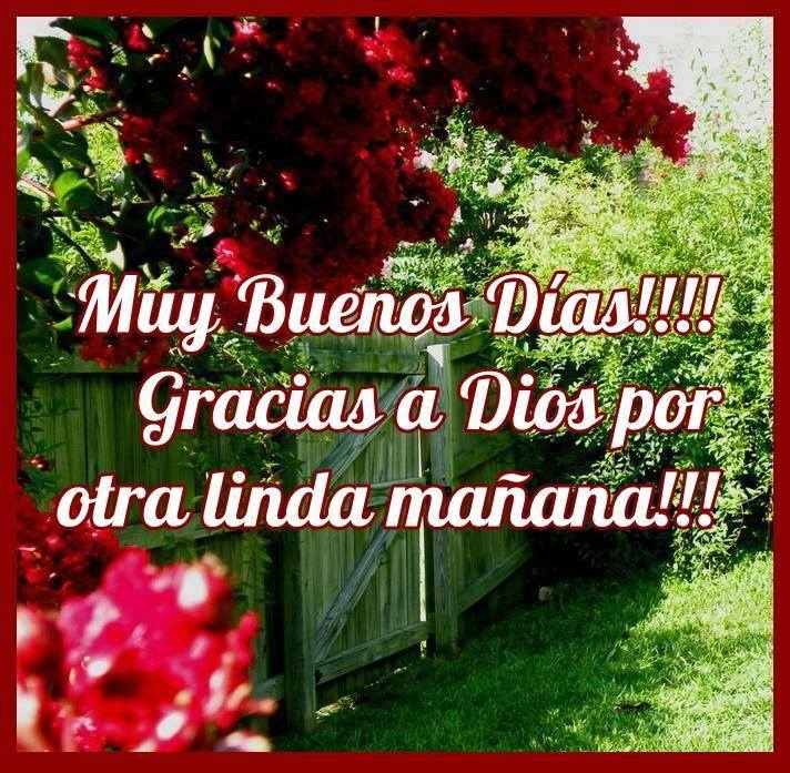 ¡Muy Buenos Días! ¡Gracias a Dios por otra linda mañana!