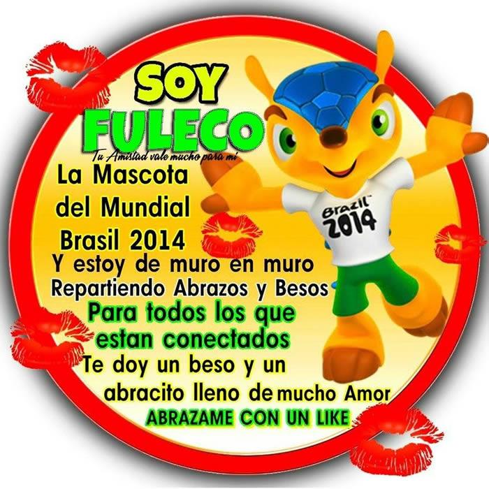 Soy Fuleco, la mascota del Mundial Brasil 2014