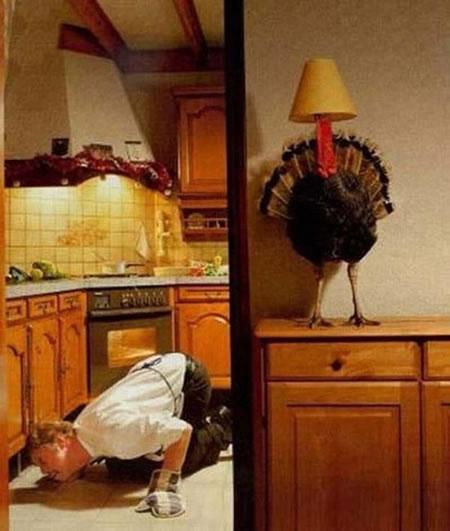 Día de Acción de Gracias Imágenes