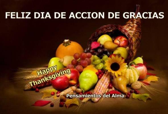 Feliz Día de Acción de Gracias, Happy Thanksgiving