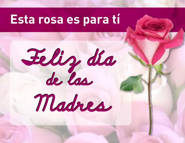 Esta rosa es para tí. Feliz día de las...