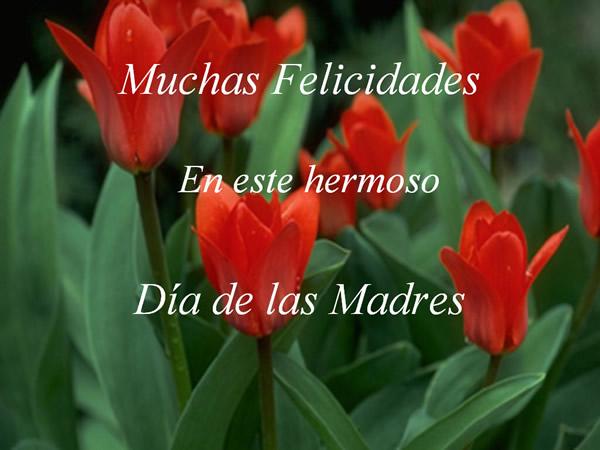 Muchas Felicidades en este hermoso Día de las Madres