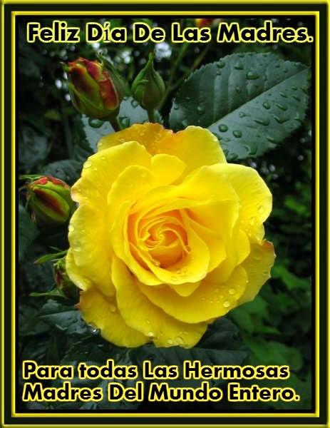Feliz Día de Las Madres. Para todas las...
