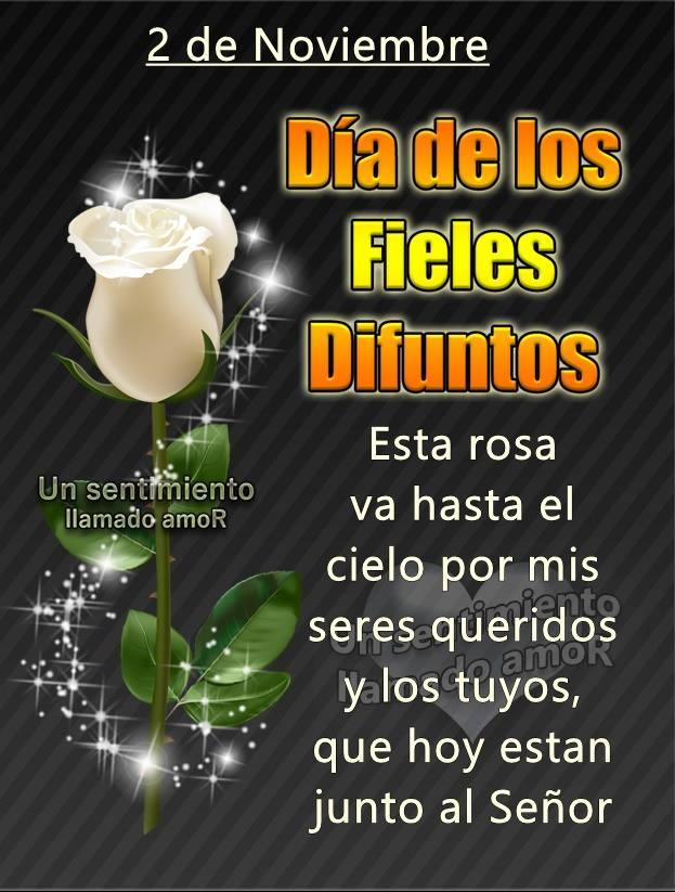 2 de Noviembre. Día de los Fieles Difuntos. Esta rosa va hasta el cielo por mis seres queridos y los tuyos, que hoy estan...