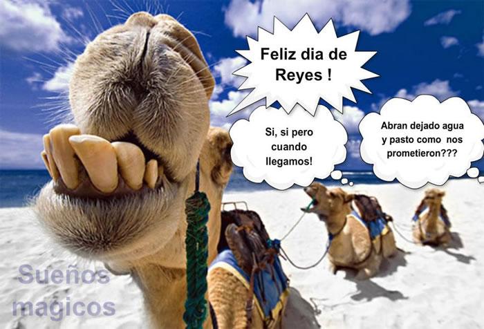 Feliz día de Reyes!