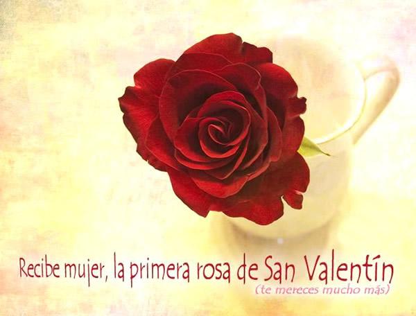 Recibe mujer, la primera rosa de San Valentín