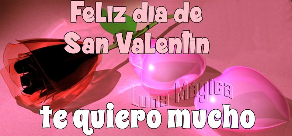 Feliz día de San Valentín. Te quiero mucho