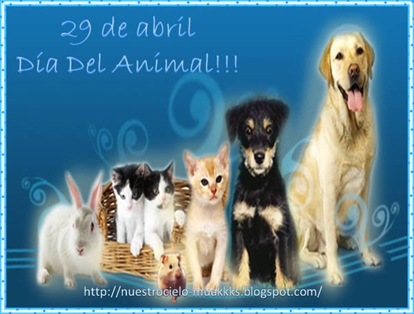 29 de abril - Día del Animal!