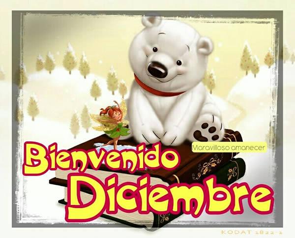 Bienvenido Diciembre