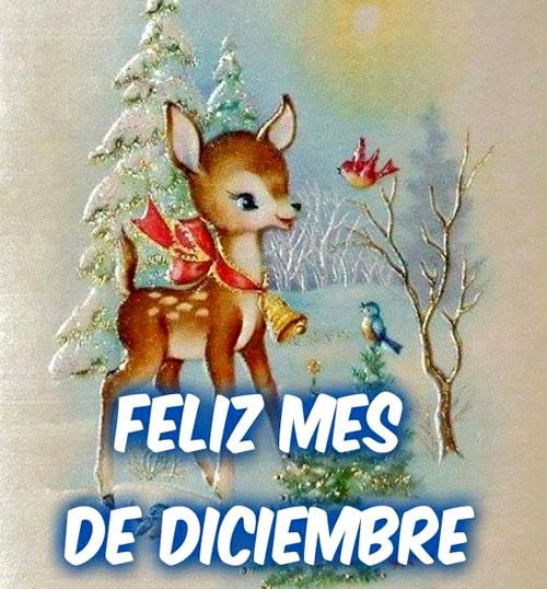 Feliz Mes de Diciembre