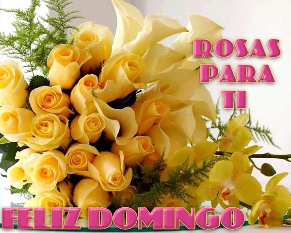 Rosas Para Ti. Feliz Domingo