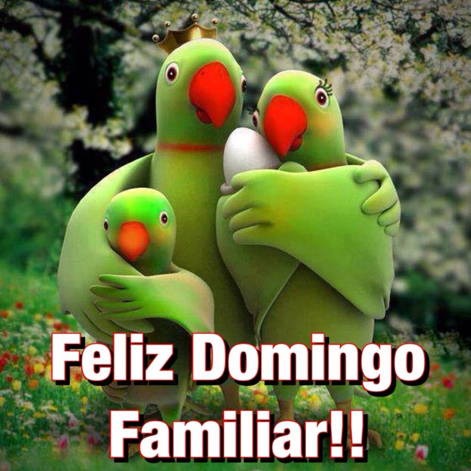 Feliz Domingo Familiar!!