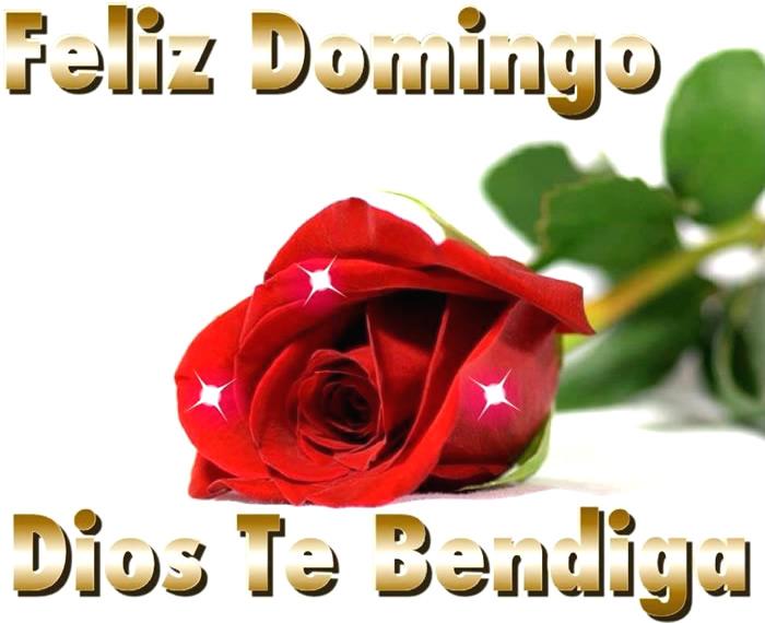 Feliz Domingo, Dios Te Bendiga