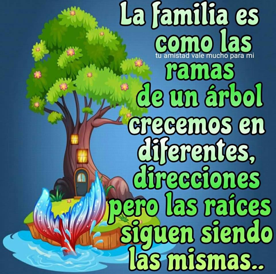 La familia es como las ramas de un árbol...