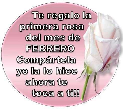 Te regalo la primera rosa del mes de Febrero