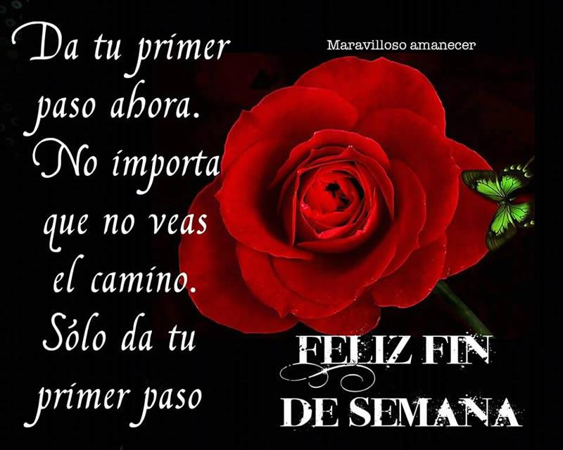 Imagenes Etiquetadas Con Rosa Roja Pagina 6 Imagenes Cool