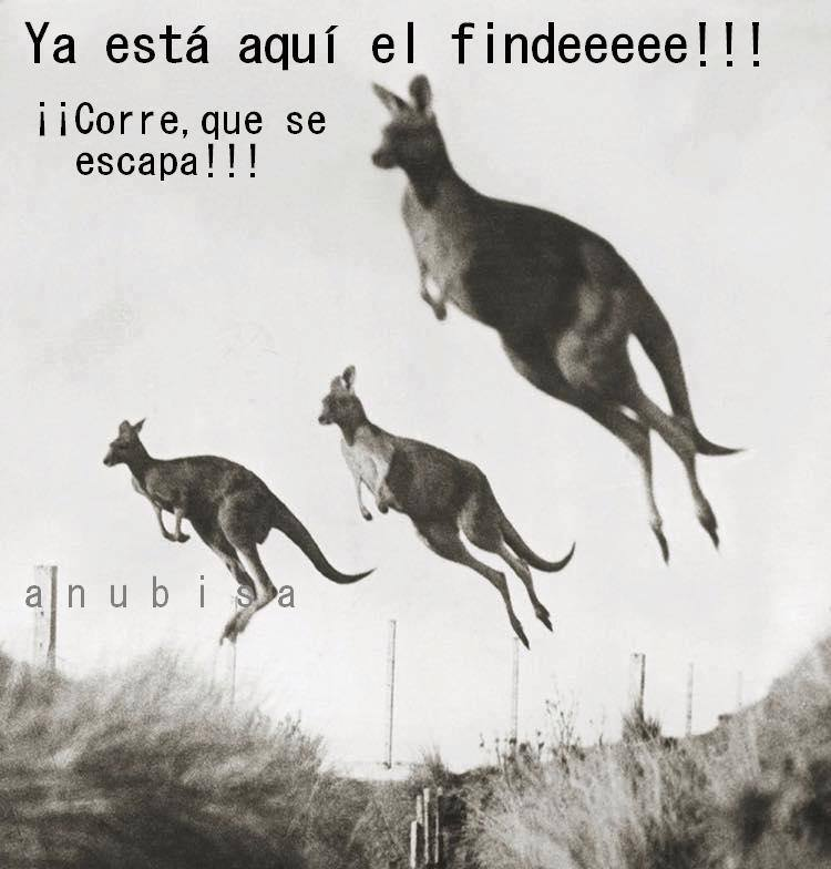 ¡Ya está aquí el findeeeee! ¡¡Corre, que se escapa!