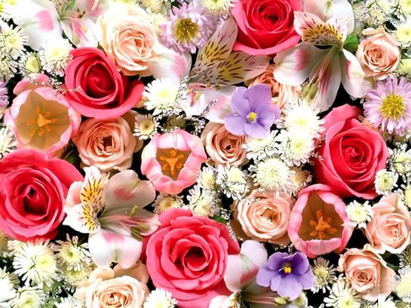 Bonita postal de flores diferentes