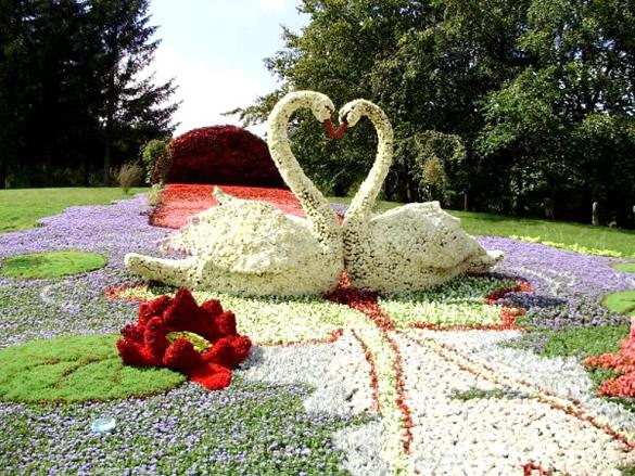 Cisnes y paisaje hechos con flores