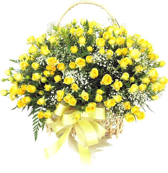 Grandioso arreglo de rosas amarillas