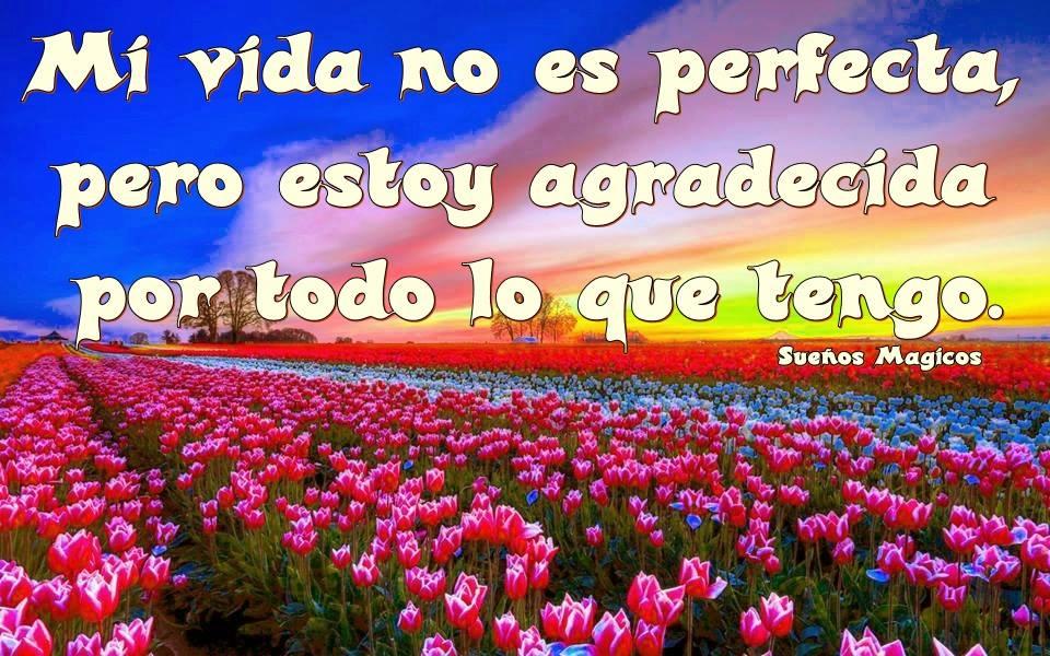 Mi vida no es perfecta, pero estoy...