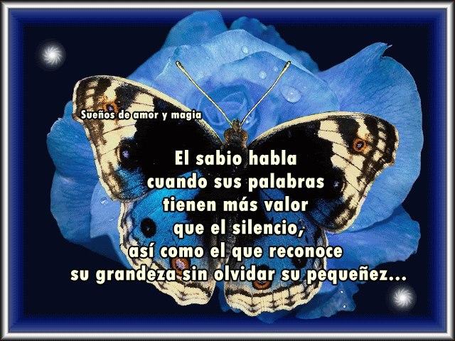 El sabio habla cuando sus palabras tienen más valor que el silencio...
