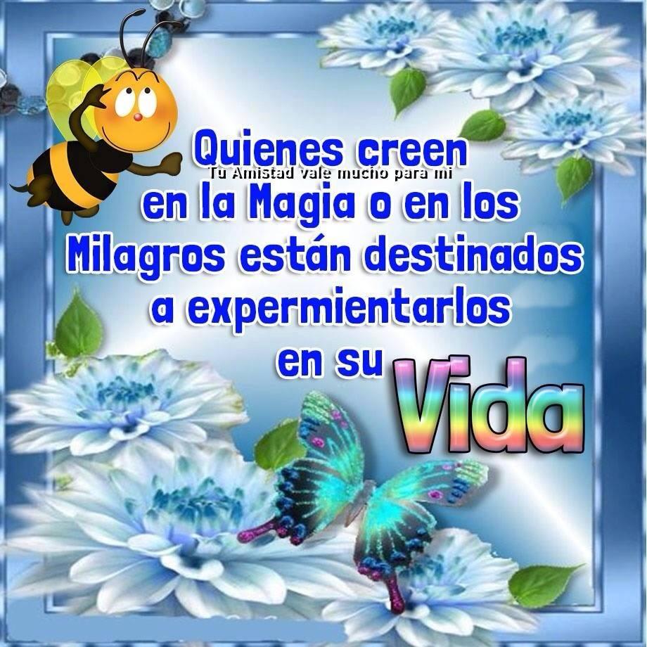 88 Imagenes Etiquetadas Con Mariposa Imagenes Cool