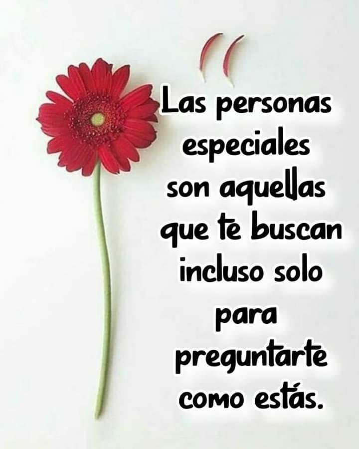 Las personas especiales son...
