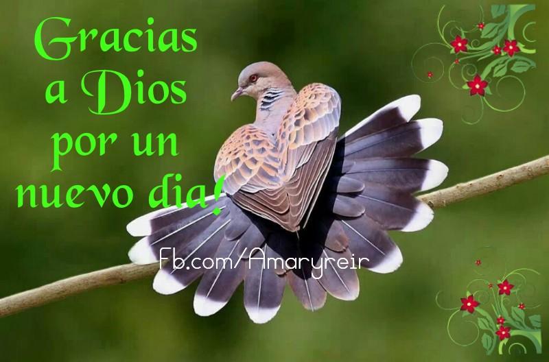 Gracias a Dios por un nuevo día!