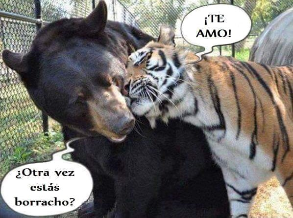 Humor imagen 1